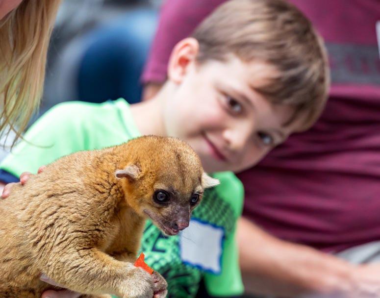 Exotic Animals Cheer Up Sick Kids at Children's Hospital