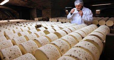 Bernard Roques, a refiner of Societe company, smells a Roquefort cheese as they mature in a cellar in Roquefort, southwestern France.