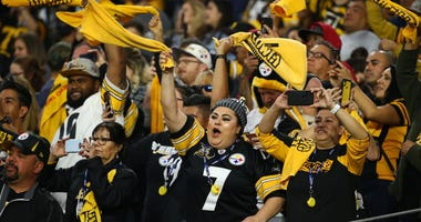 Steelers crowd