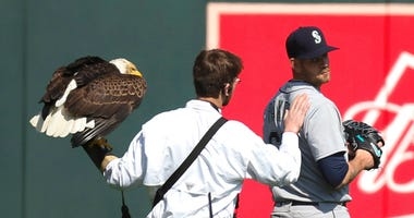 Eagle Baseball