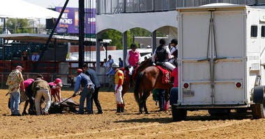 Track officials tend to Congrats Gal after the horse collapsed after the eighth horse race at Pimlico Race Course, Friday, May 17, 2019, in Baltimore.
