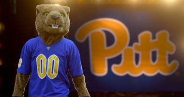 "Pittsburgh Panthers mascot ""Roc"" stands on the field before the start of the game"
