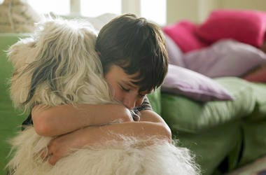 Boy reunited with missing dog