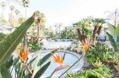 Glen Ivy Hot Springs in Corona
