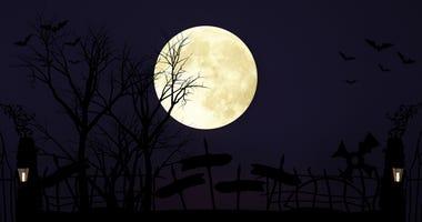 full moon, halloween