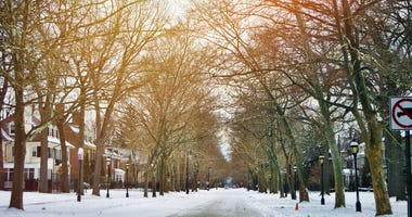 DGS winter forecast