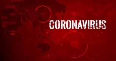 dgs corona
