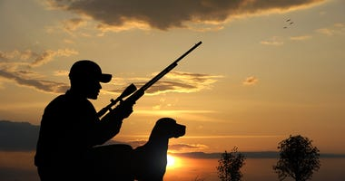 hunter with rifle and dog