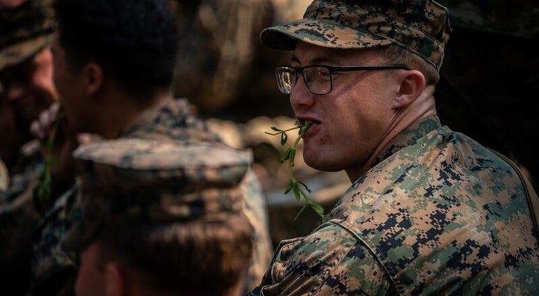 Cobra Gold 2020 military exercise
