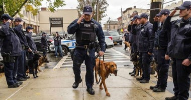 The four-year-old NYPD bloodhound was dying of cancer.