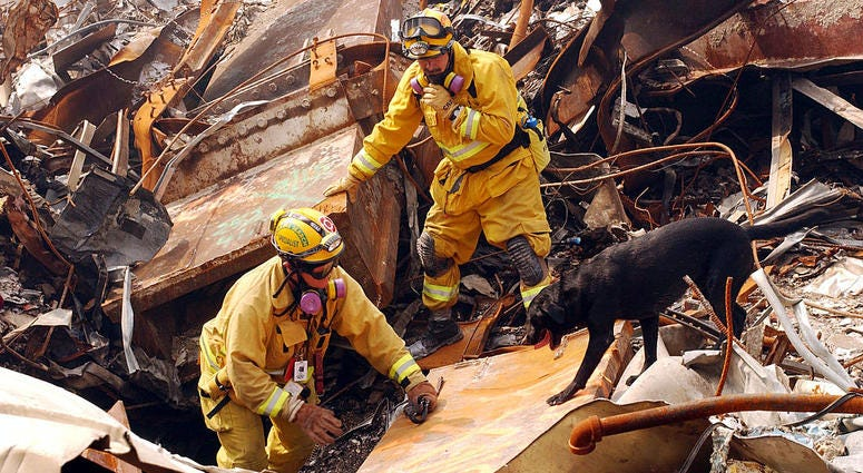 Mike Scott from the California Task Force-8 and his dog, Billy, search through rubble for victims of the September 11 terrorist attack at the World Trade Center September 21, 2001 New York City, NY.