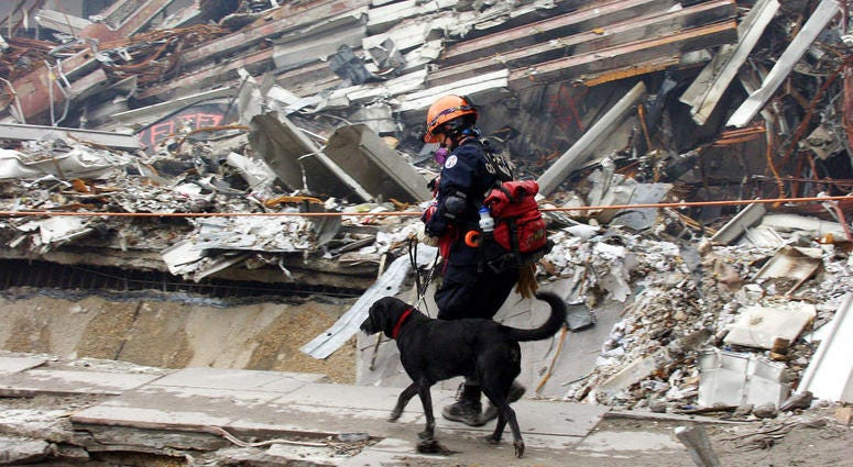 Colorado Task Force member Ann Wickman crosses the pile of rubble with her dog Jenner at Ground Zero September 25, 2001 in New York City