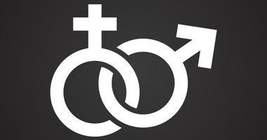 Kirkwood elementary teacher wants to drop gender pronoun