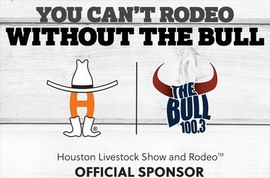 Come see The Bull team at RODEO HOUSTON