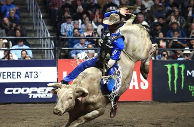 rodeo canceled