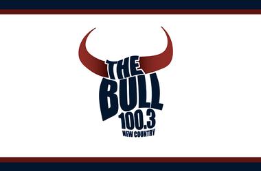 The Bull Houston