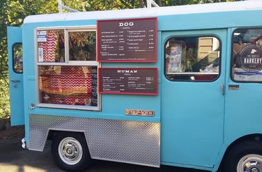 Seattle, Dogs, Food Truck, Veterinary, Park, Brewery