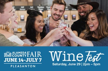 Alameda County Fair Wine Fest