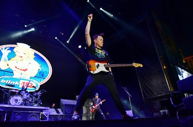 Mark Hoppus of Blink-182 performs