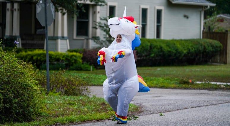 Florida unicorn