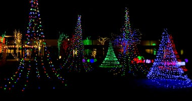 strings of lights in the shape of Christmas Trees outside at night