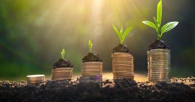 saving growing like plants