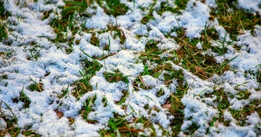 Light snow on grass