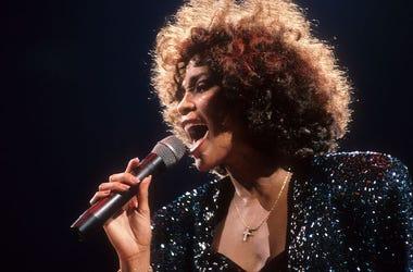 Whitney Houston, Concert, Madison Square Garden, 1987