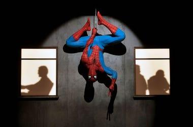 Spider-Man, Display, Art Exhibit, Marvel: Universe of Super Heroes, 2019