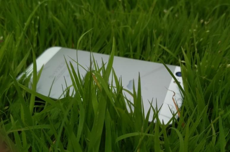 iPhone in Grass