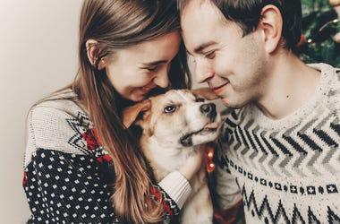 Man, Woman, Couple, Dog, Christmas