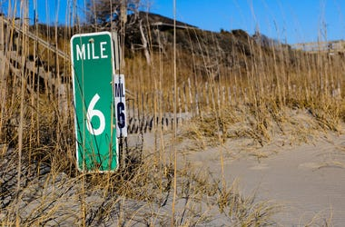 Mile Marker, Sand, Grass, Beach Dunes
