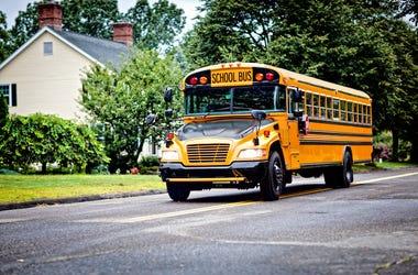 Yellow, School Bus, Neighborhood