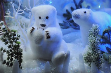 Christmas, Polar Bears, Toys, Display, Snow, Lights