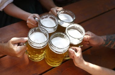 Beer, Mugs, Friends, Cheers