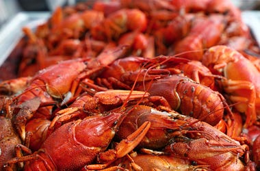 Boiled Crawfish, Mudbug