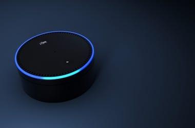 Echo Dot Rendering