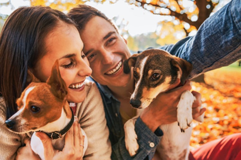 Dating App For Dog Lovers