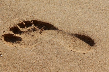 Foot, Footprint, Feet, Sand, Beach