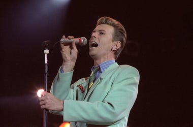 David Bowie, Singer, Concert, Singing, Music
