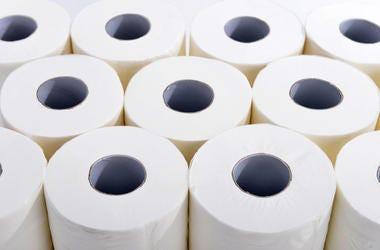 Toilet Paper, Toilet, Bathroom