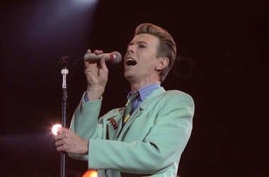 David Bowie, Singer, Concert, Singing, Music