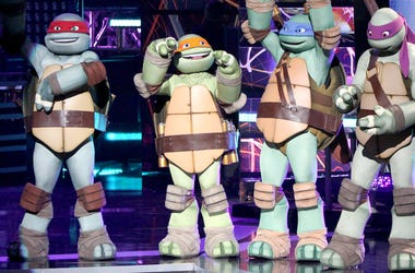 Teenage Mutant Ninja Turtles, TMNT
