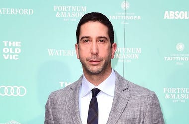 David Schwimmer, Suit, Green Background, Red Carpet