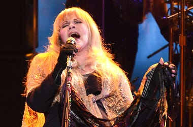 Stevie Nicks, Singing, Concert, Microphone