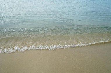 Beach, Water, Shore, Wave
