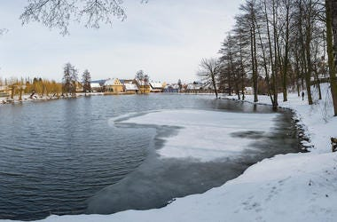 Frozen, Pond, Lake, Ice, Water, Forest