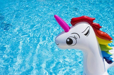 Unicorn, Pool, Floaty, Water