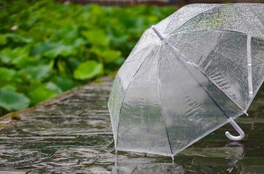 Umbrella, Rain, Ground, Clear