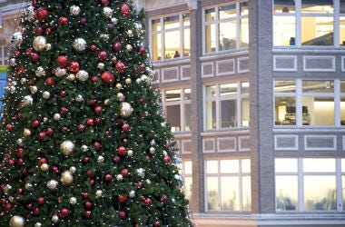 Christmas Tree, Downtown, City, Building